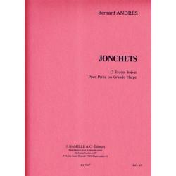 Andrès Bernard - Jonchets, études brèves petite ou grande harpe