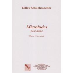 Schuehmacher Gilles - Microludes
