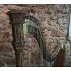 Harpe Erard style gothique à 47 cordes
