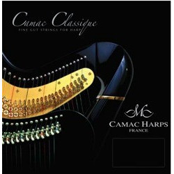 Camac 18 (B) Si Natural Gut  (octave 3) - Lever harp Si 14