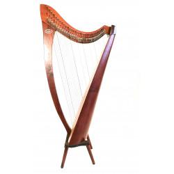 Occasion - Harpe Salvi - Aïda - 34 cordes boyau